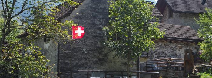 asta_per_la_propria_bandiera_a_casa